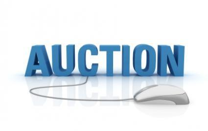 Online Auction Tips